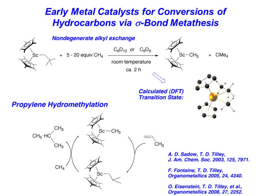 sigma-bond metathesis